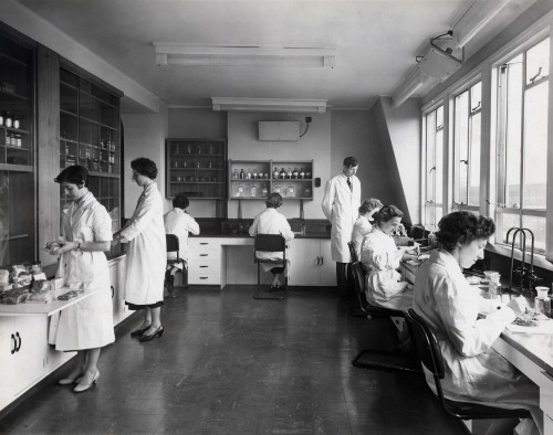 SA/BL/IMA/16/1 - Photograph of technicians at work in laboratory, 14th March 1957