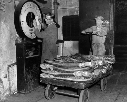 SA/BL/IMA/6/4 - Photograph of staff weighing meat in factory