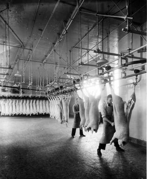 SA/BL/IMA/7/1 - Photograph of butchers cutting pig carcass in factory, 1950s-1960s
