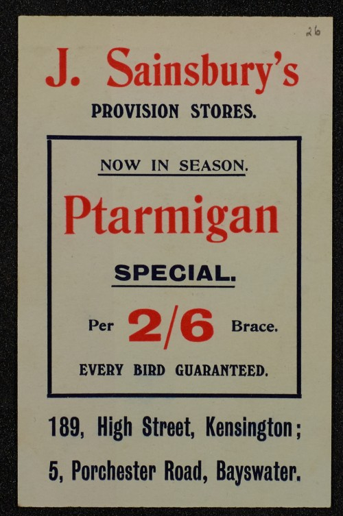 SA/MARK/ADV/1/1/1/1/1/6/1/25 - Ptarmigan advertisement, 1910
